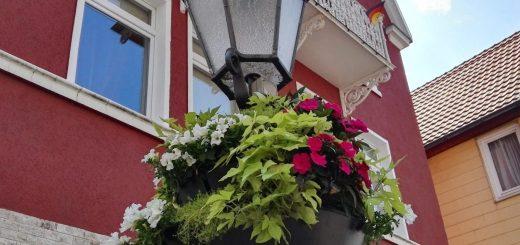 Blumenampeln